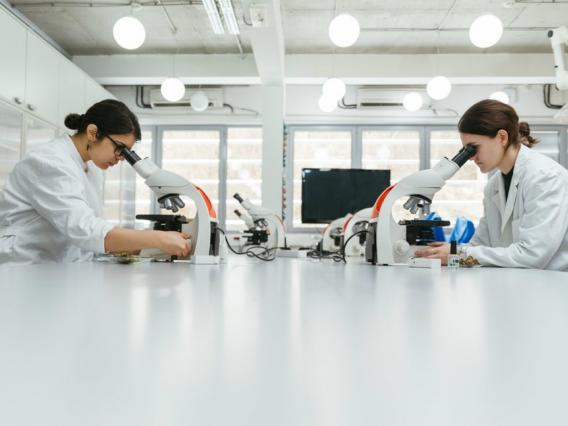 Women working in a laboratory